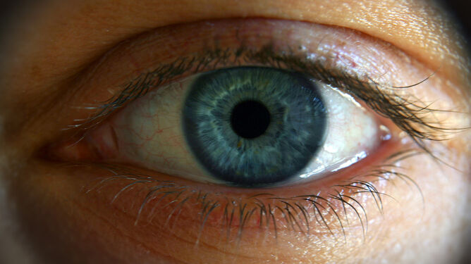 Naukowcy odkryli nowy ruch oka