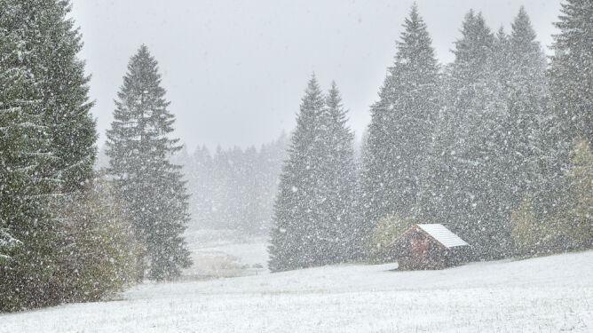 Intensywne opady śniegu, oblodzenia, mgły i silny wiatr. Prognoza zagrożeń IMGW