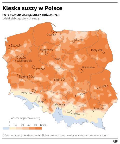 Obszary zagrożone suszą w Polsce (Maciej Zieliński/PAP)